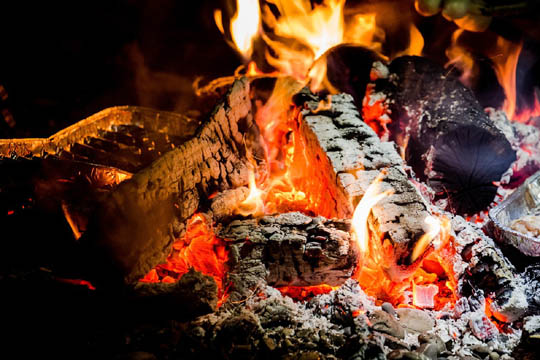 Cenere di legna