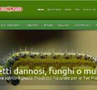 Screenshot sito La Praglia